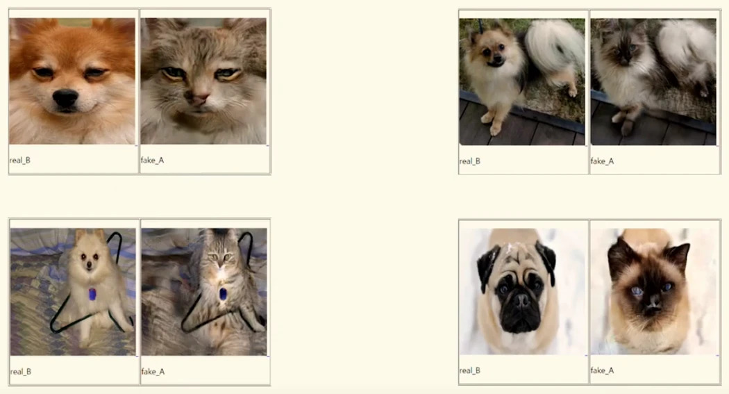 Dogs become cats. (Source: NCSoft)