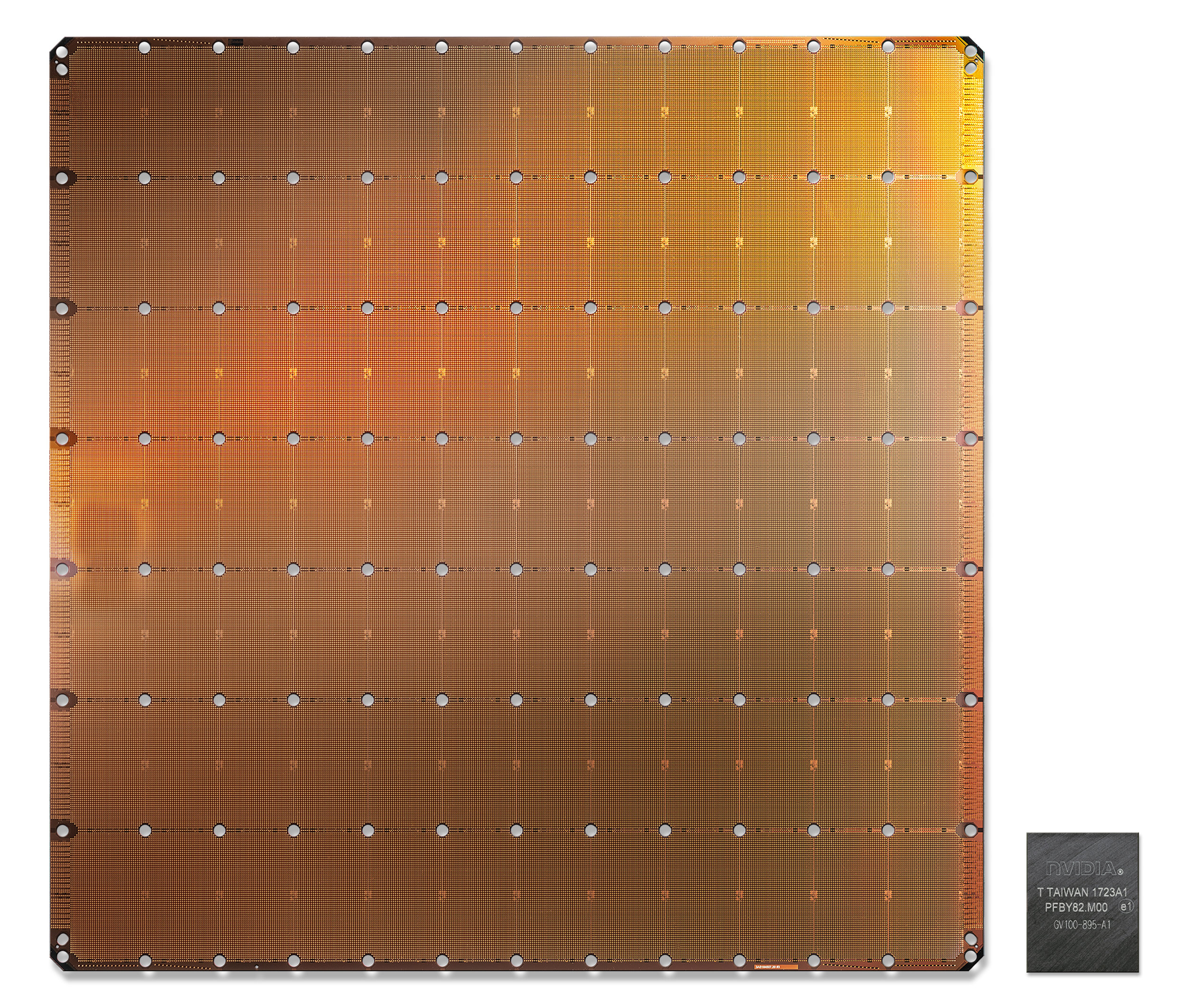 Cerebras Wafer-Scale Engine in comparison to the largest AI chip.