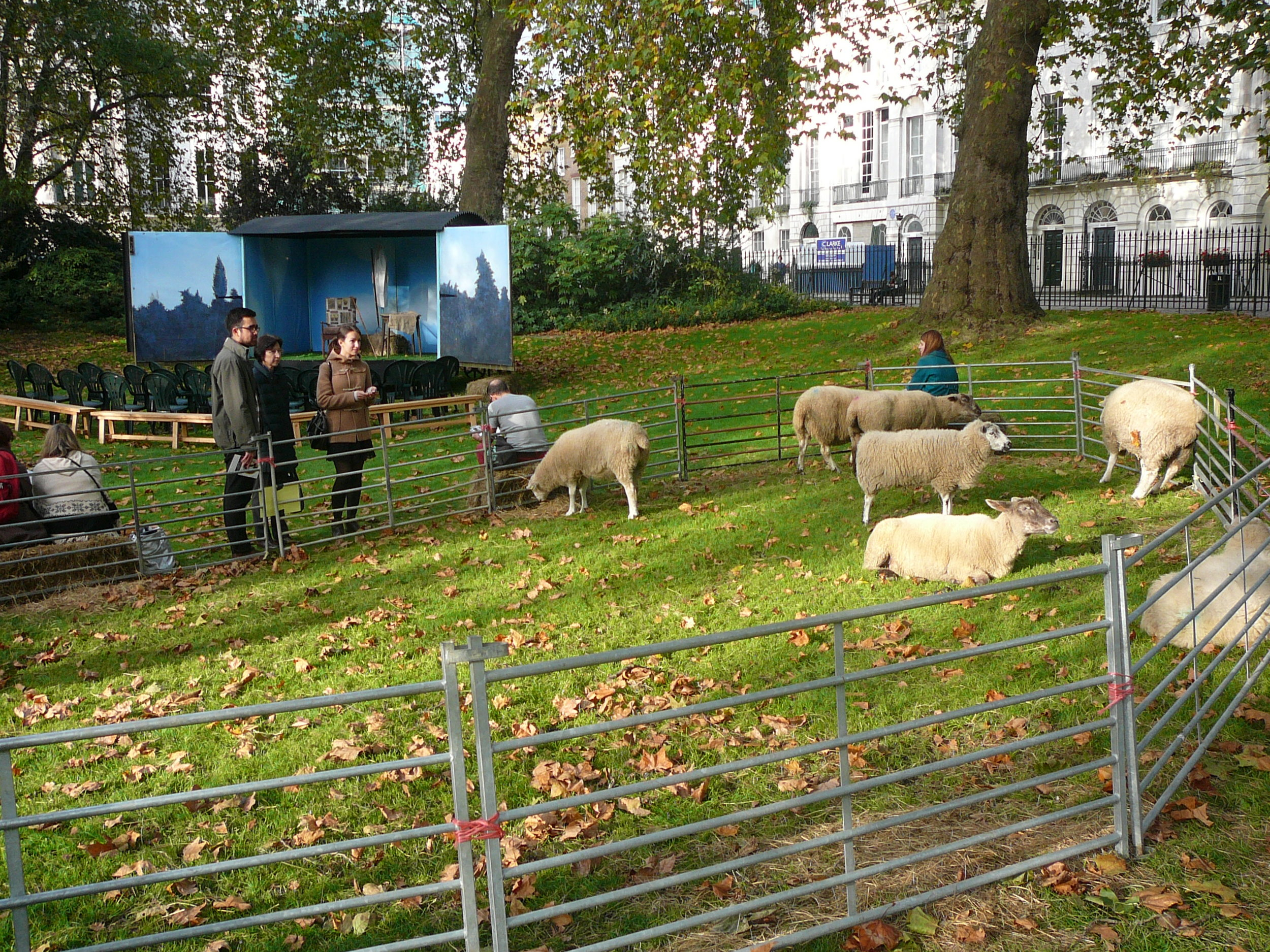 We are not the only ones with sheep in an urban setting! Spotted at a reading of Dylan Thomas' poetry in Fitzroy Square, London, October 2014.JPG