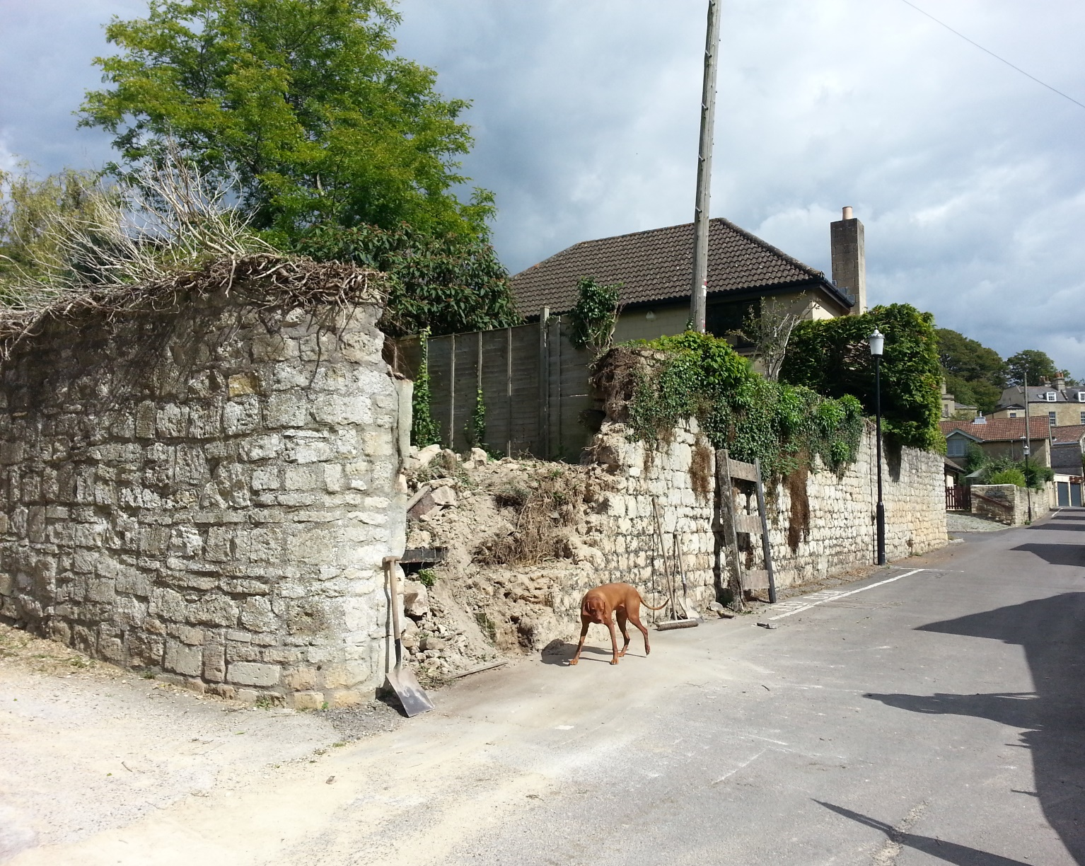 Beckford's Wall west, after removal of stonework, 2.9.15