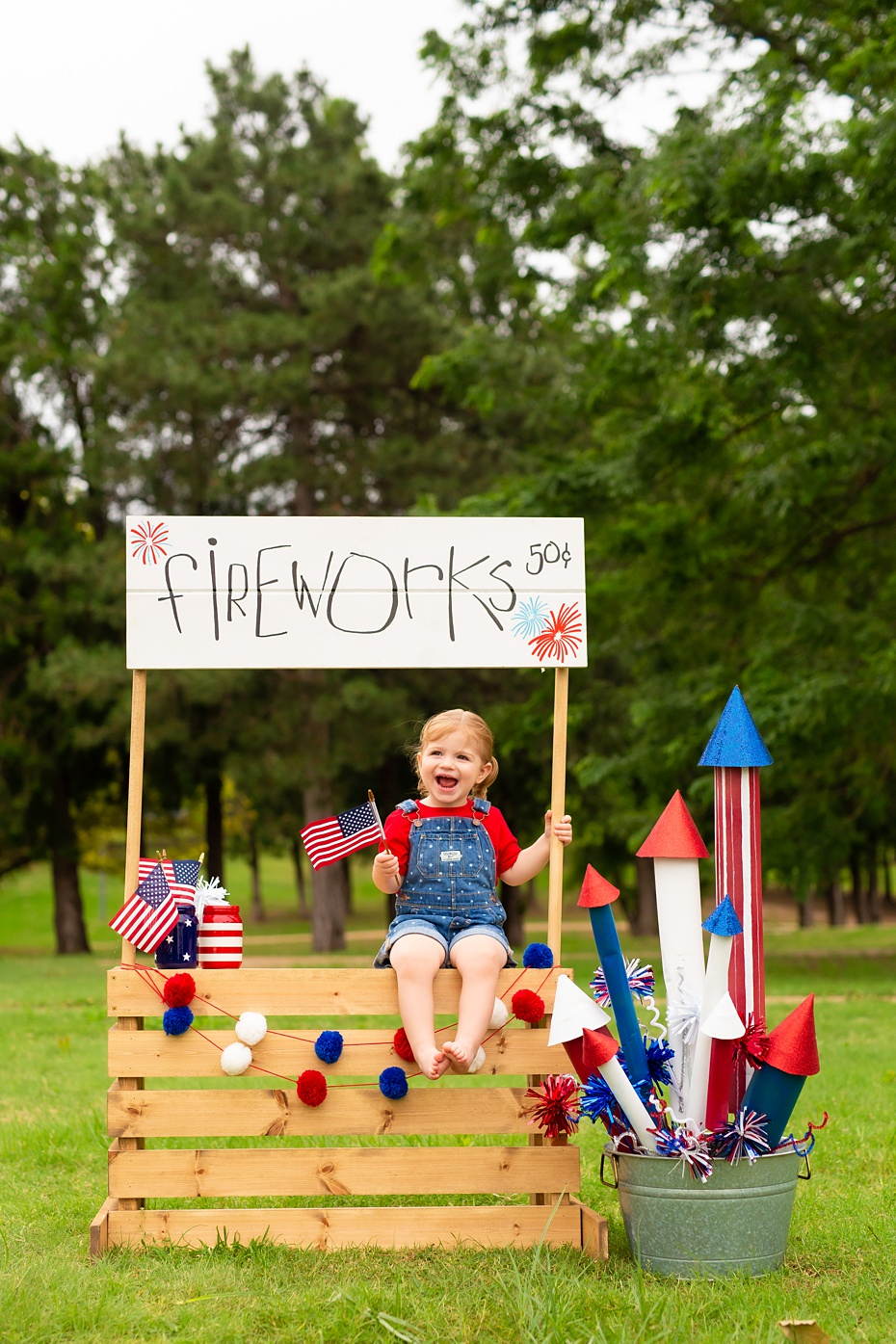 Jones 4th of July Minis 2019-2_web.jpg