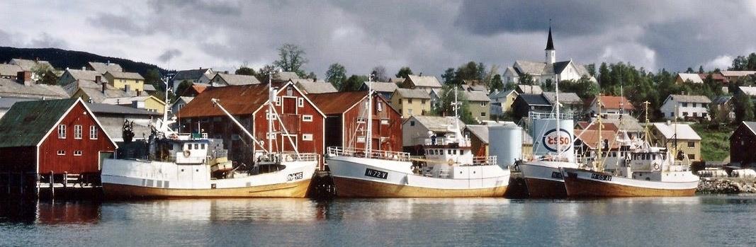 Hemnesberget 1984