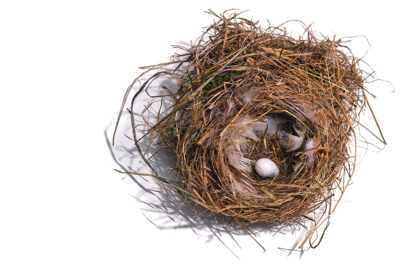 LinkedIn Basics & Productivity - Feather your LinkedIn 'nest'. Make it pretty, but more importantly, make it work.