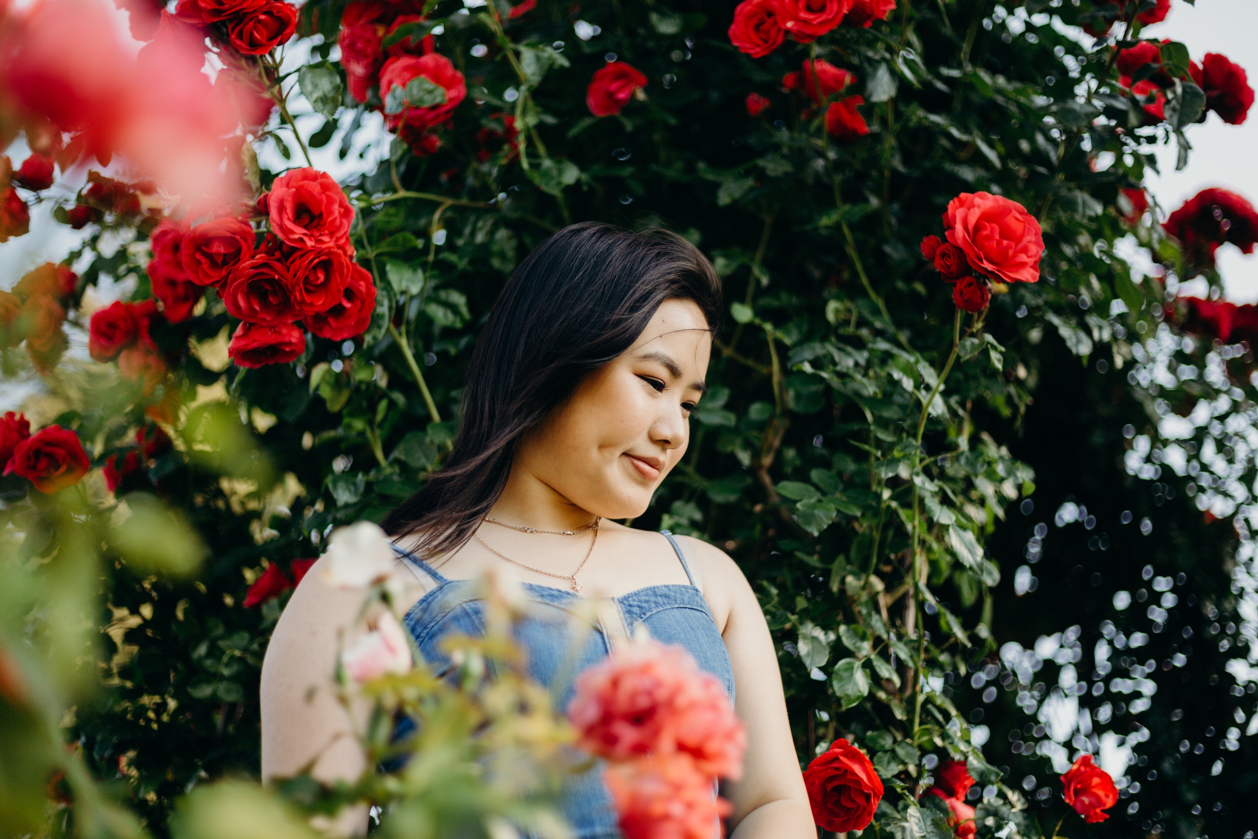 K A T H E R I N E - At Municipal Rose Garden (click the name to see more)