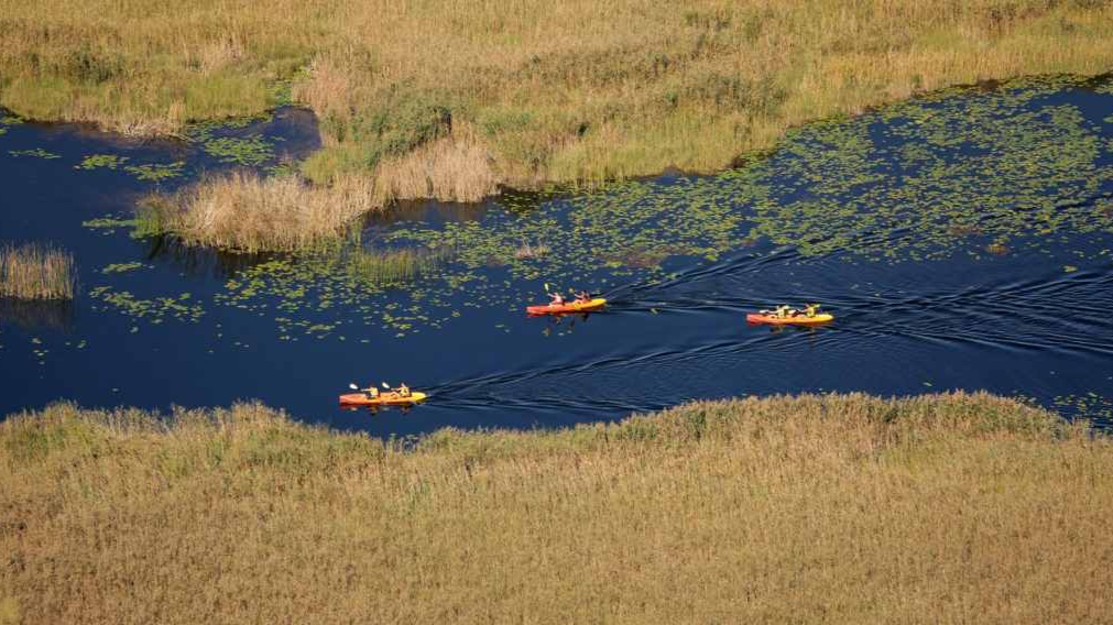 Safari Adventure - Kayak River SafariOne Day, from 40€ pp