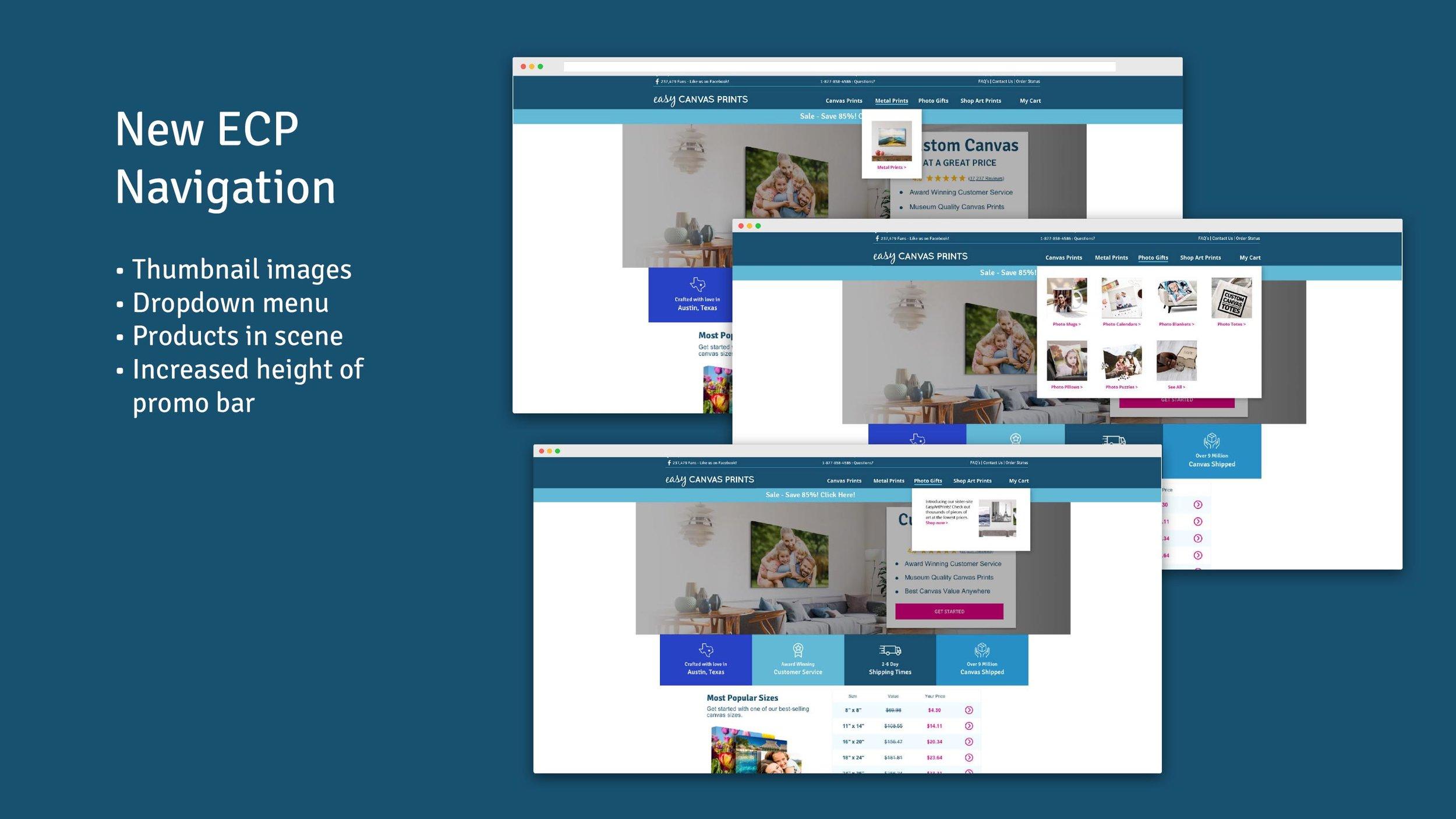 16_Laura Worrick - ECP Homepage Redesign.jpg