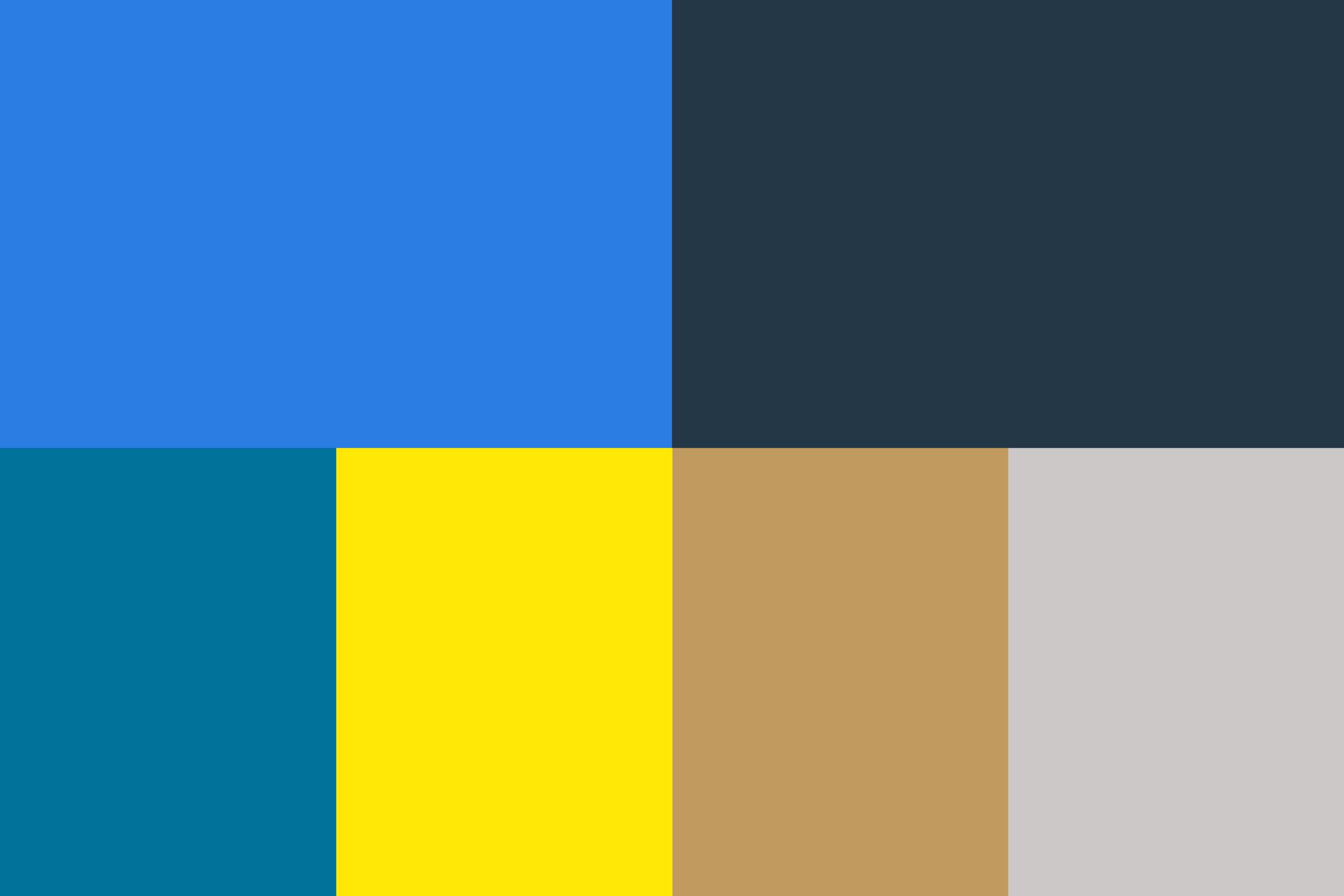 Samuel Lee Miller_Portfolio_Useful Group_Brand Colors.png