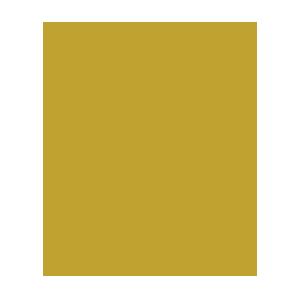 professionals-za-icon.png