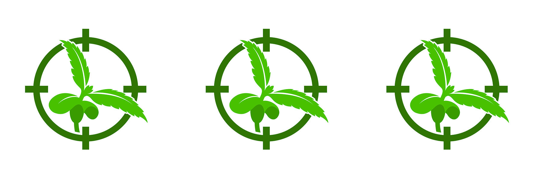 NZ Target Leaf.jpg