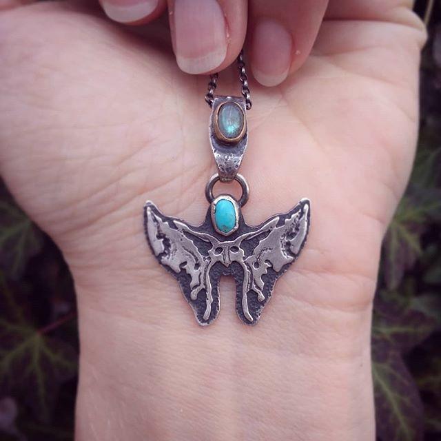 Sphenoid Moth