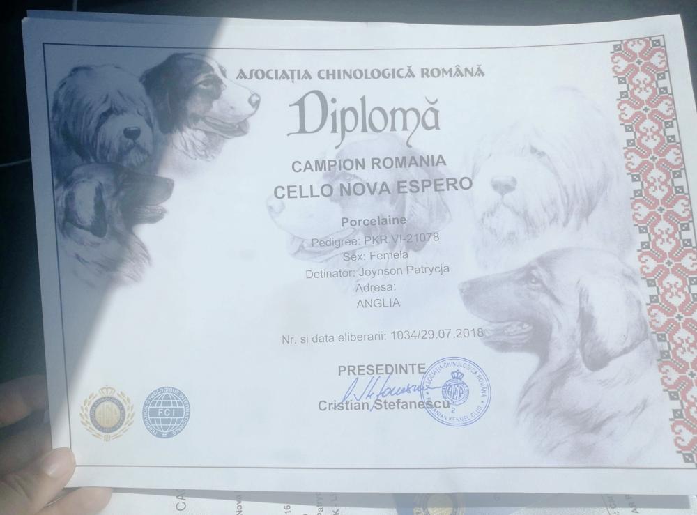 cello-diploma18.png
