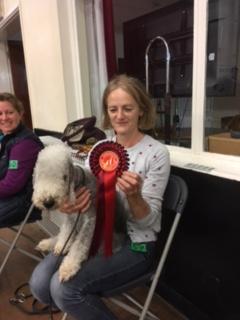 Junior 1st. Jane McCourt and Dylan the Bedlington Terrier
