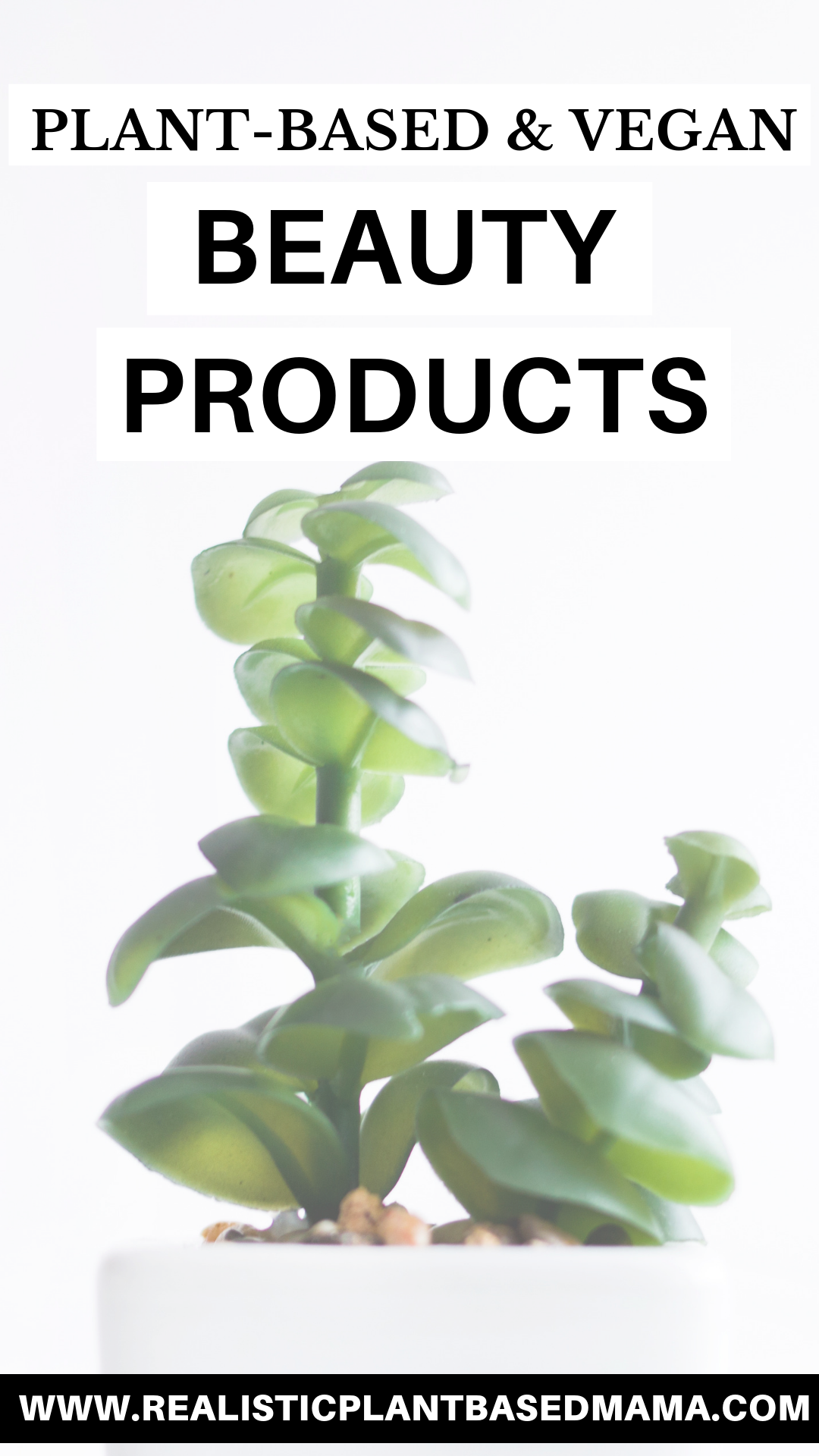 top plant based and vegan beauty products