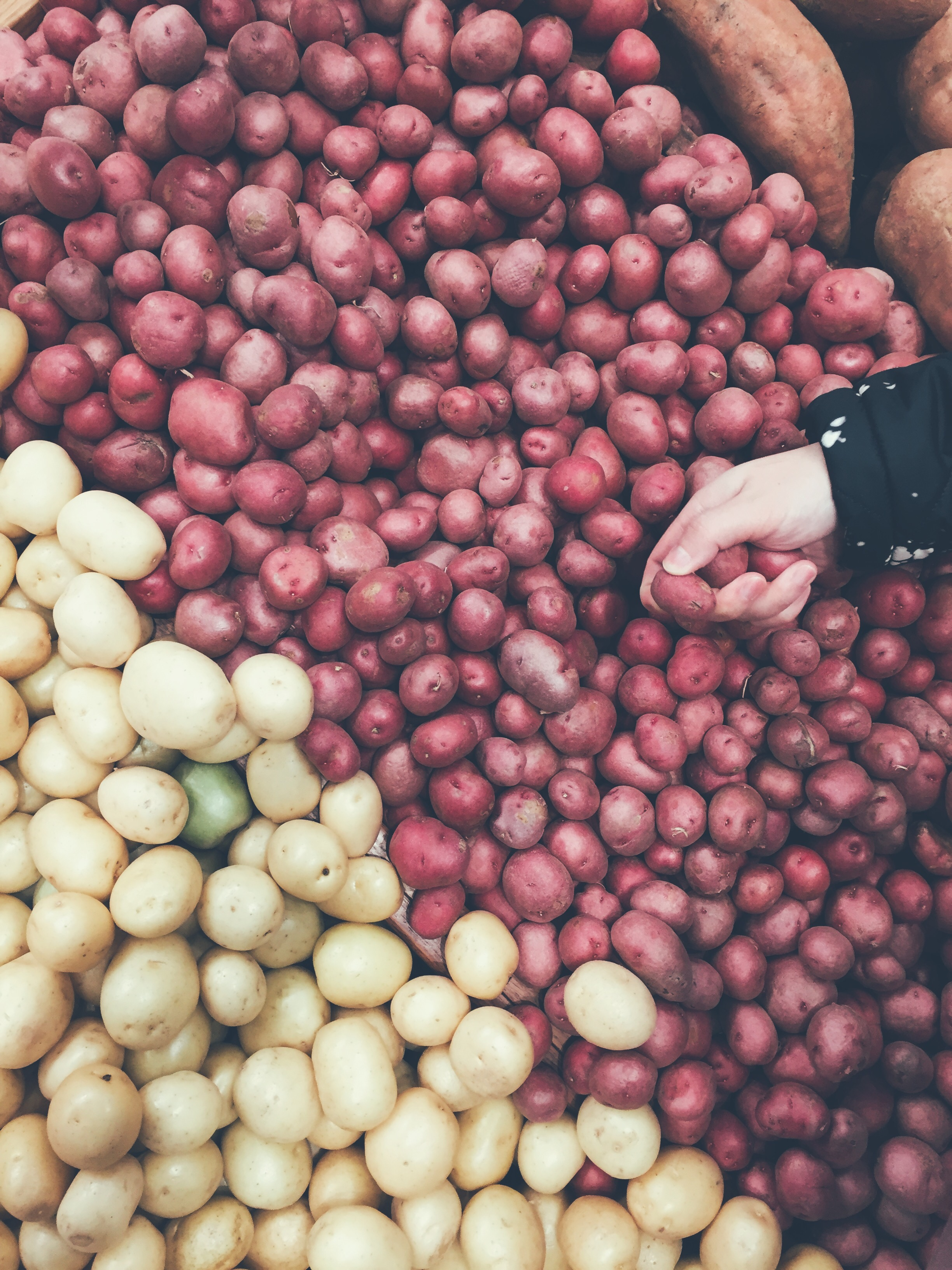 how to feel full on a plantbased diet