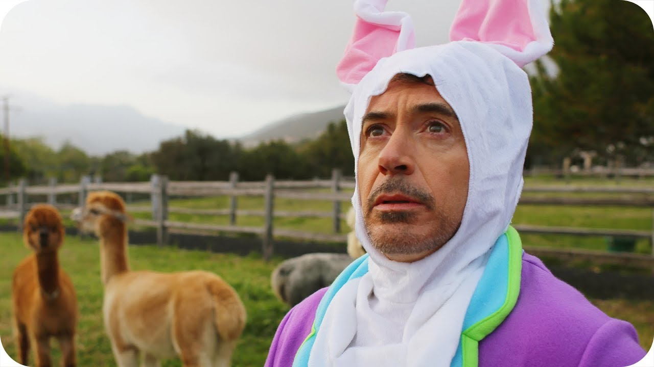 Robert Downey Jr. in a bunny suit, in front of some alpaca. You're welcome.