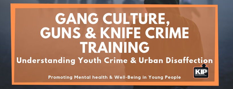 Gang Culture,  Guns & Knife Crime Training.png