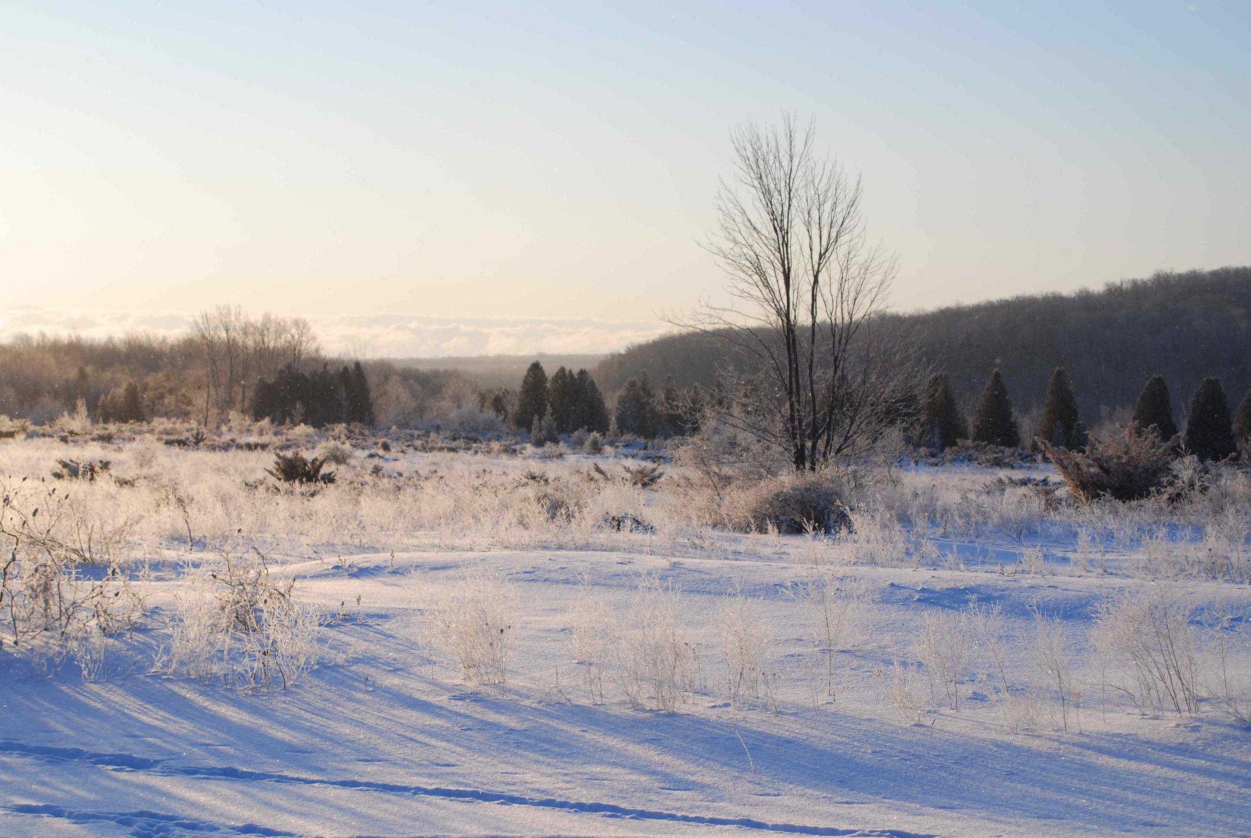 winterview.jpg