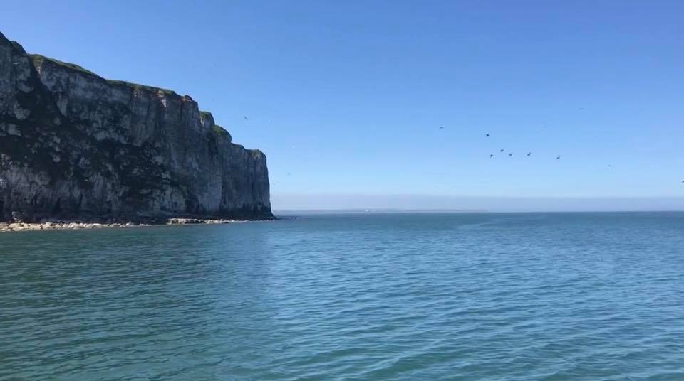 3 Hours (or longer) Bempton Cliffs and on towards Filey Bay - This fabulous trip will take you North from Bridlington Harbour across Bridlington Bay, taking in the sights from our other cruises. But instead of turning around at Bempton Cliffs, we sail on past Speeton, Reighton and Hunmanby Gap, into the magnificent Filey BayArdent fans of the Yorkshire Belle love this much longer trip into Filey Bay. You can really appreciate the majesty of both the fabulous East and North Yorkshire coastline together with the charm of the Yorkshire Belle itself.In recent years we have noticed that photographers appreciate this trip as it gives a chance to see the Heritage Coast in its entirety from Sewerby Steps to Speeton.