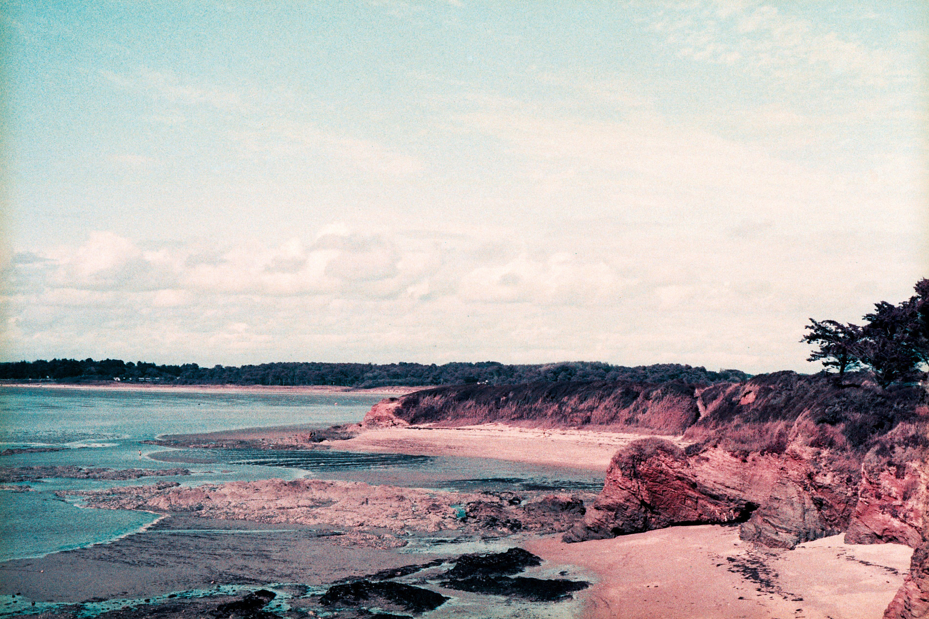 2014 - Bretagne -  Camera  Olympus OM10  Lens  Zuiko 50mm f/1.8  Film  Lomochrome Purple XR 100-400