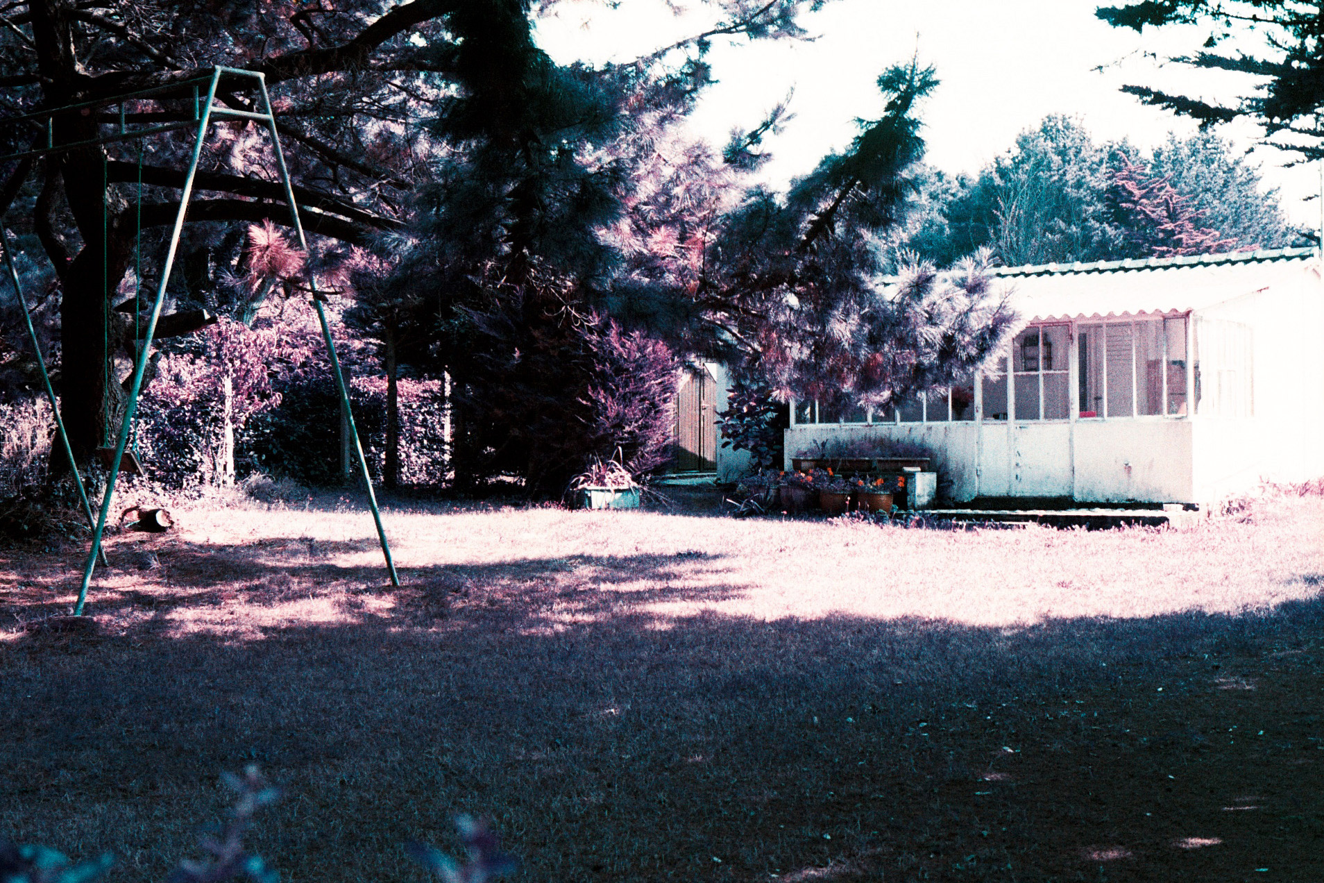 03_OM10_LOMOCHROME_PURPLE_XR_100_400_copyright_ThomasApp.jpg