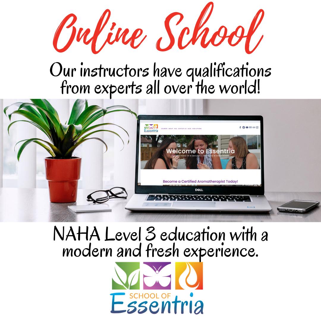 Online School - Instagram Size .png