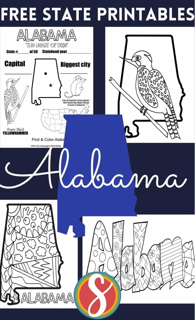 Free state coloring pages from Stevie Doodles - print and color all 50 states totally free!