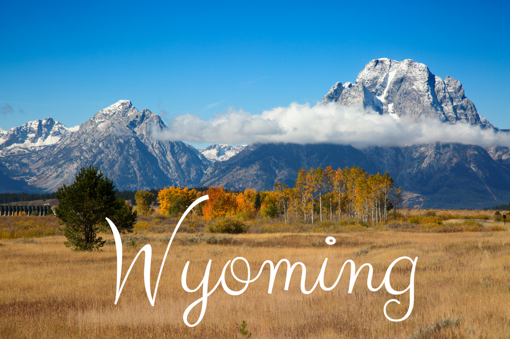 Sell Property with Back Taxes in Wyoming