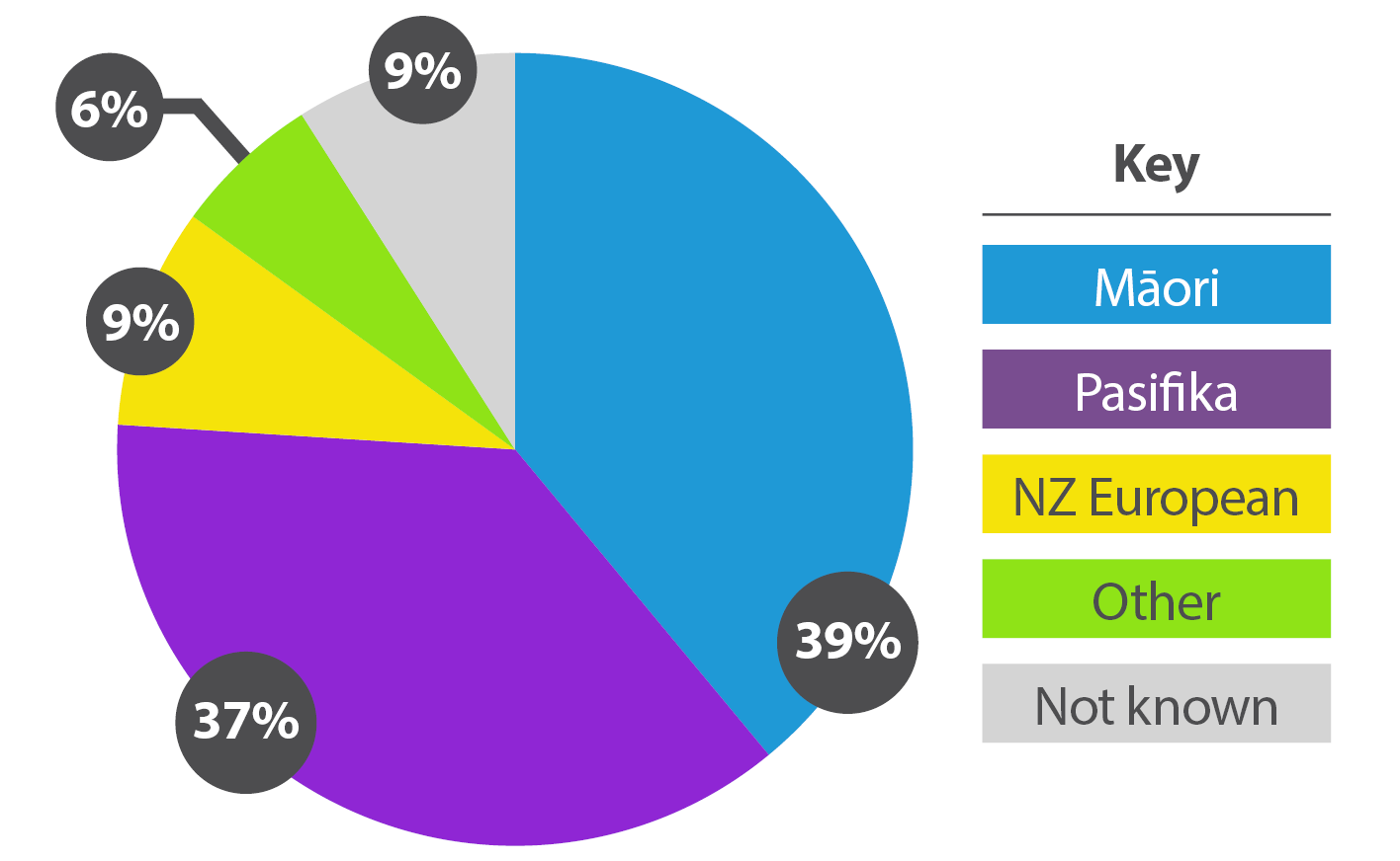 EnergyMate families by ethnicity