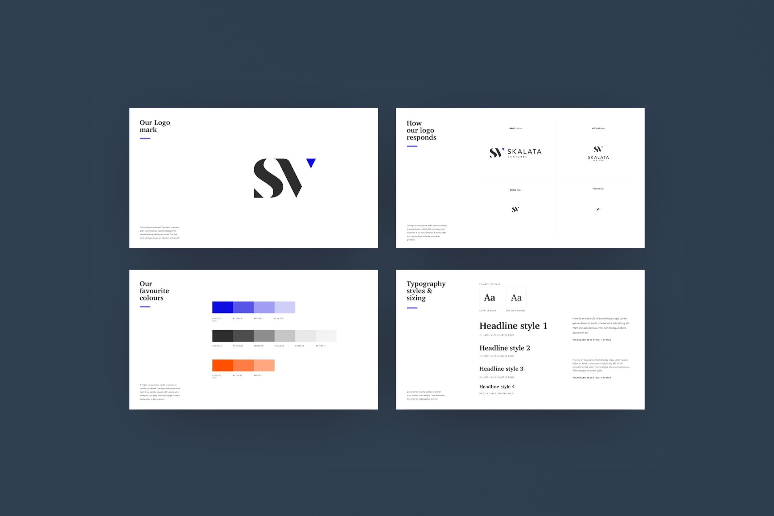 Skalata Ventures - brand.jpg