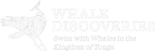 whale_discoveries_brand-whitelong.png