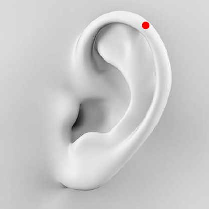 Helix Flap Piercing   This is a cartilage piercing where the jewellery sits on the outside of the ear, as opposed to the inside. It's perfect for people whose ears fold over a little at the top.