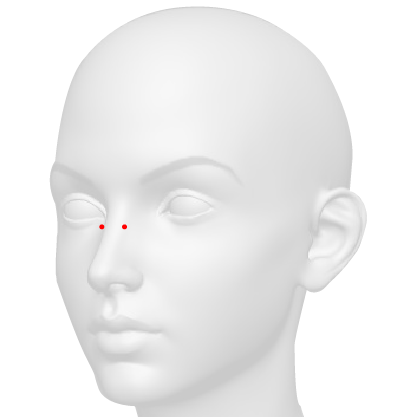 Bridge Piercing   This piercing is also known as an Erl, it is a horizontal bar across the bridge of the nose. It's considered a surface piercing.