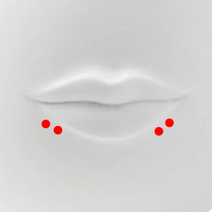 Shark Bites Piercing   This is a pair of double piercings, located on both sides of the lower lip. In total, shark bite piercings make four holes in two symmetrical sets.