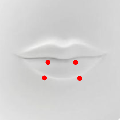 Snake   Bite Piercing   This piercing consists of two piercings evenly separated on the lower lips. The snake bites is a lip piercing, set of two and are placed on the left and right side of the lip