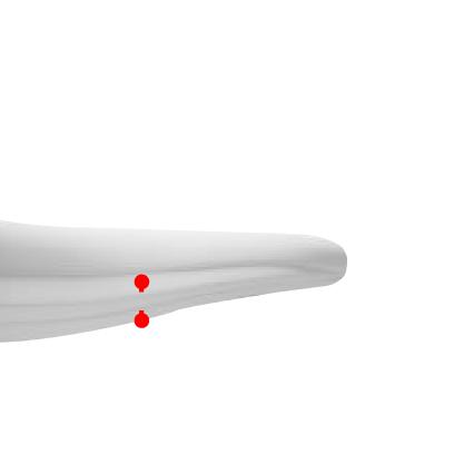Frenulum Piercing   This piercing, also known as the web piercing is a body piercing through the frenulum underneath the tongue (frenulum linguae).