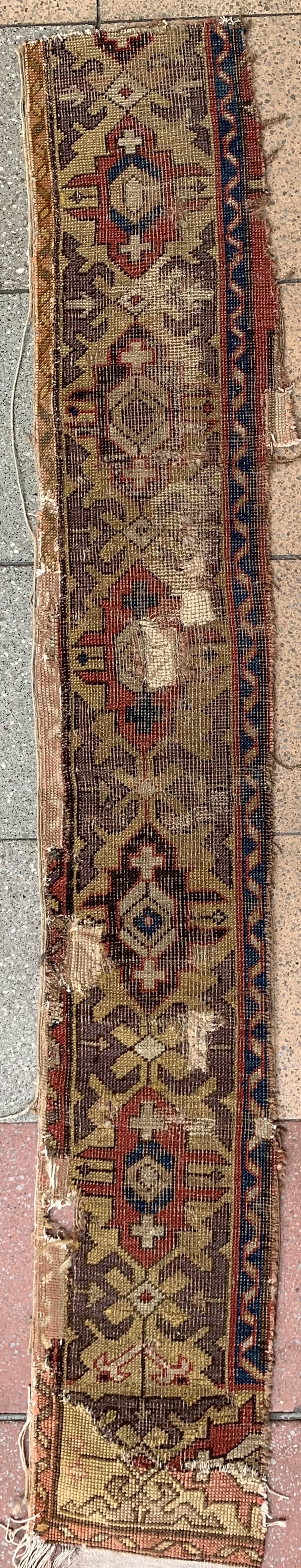 A fragment of a dragon carpet