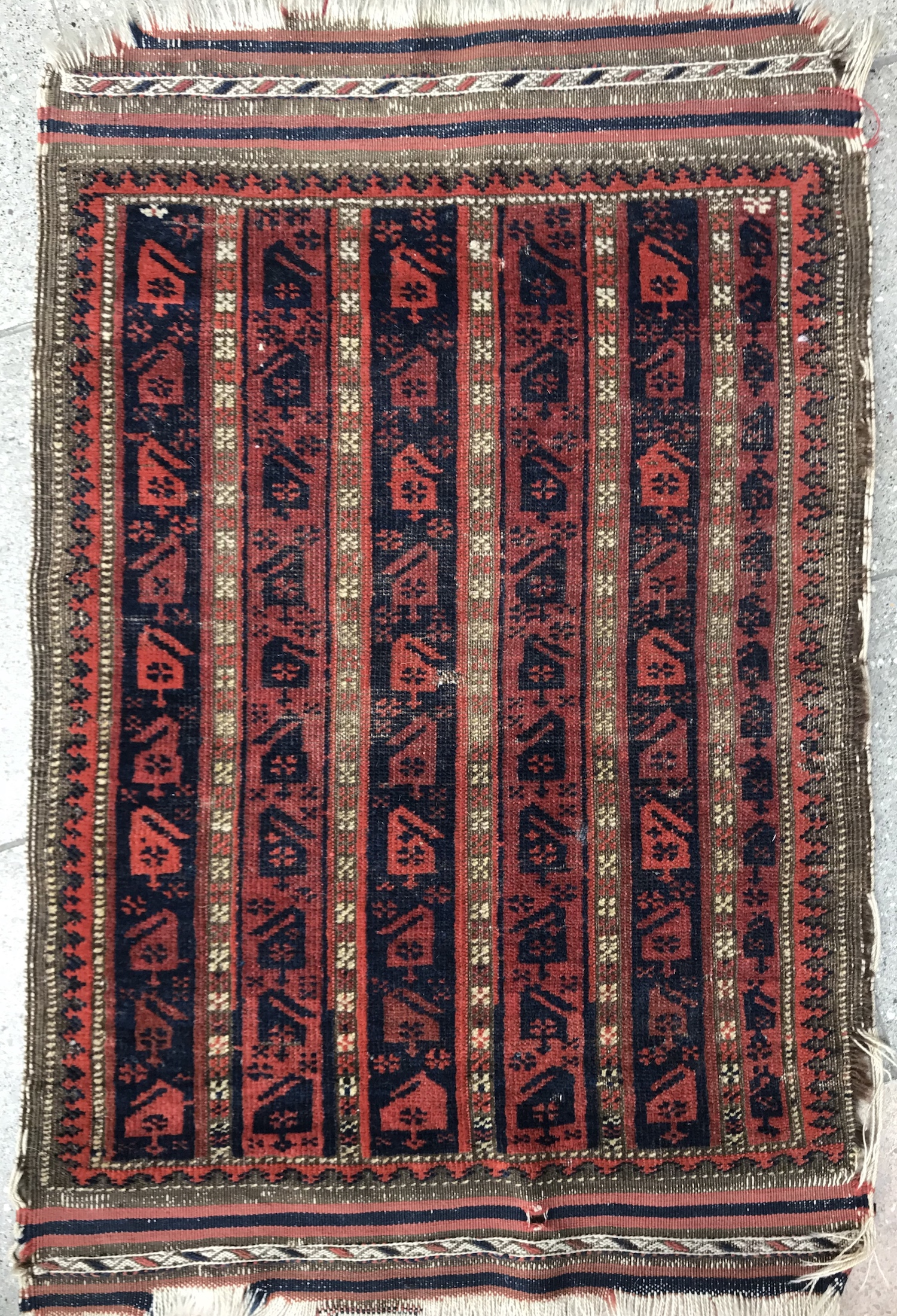 Baluch Pashti