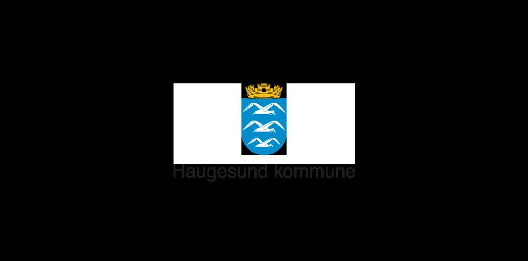Hgsd-kommune.png