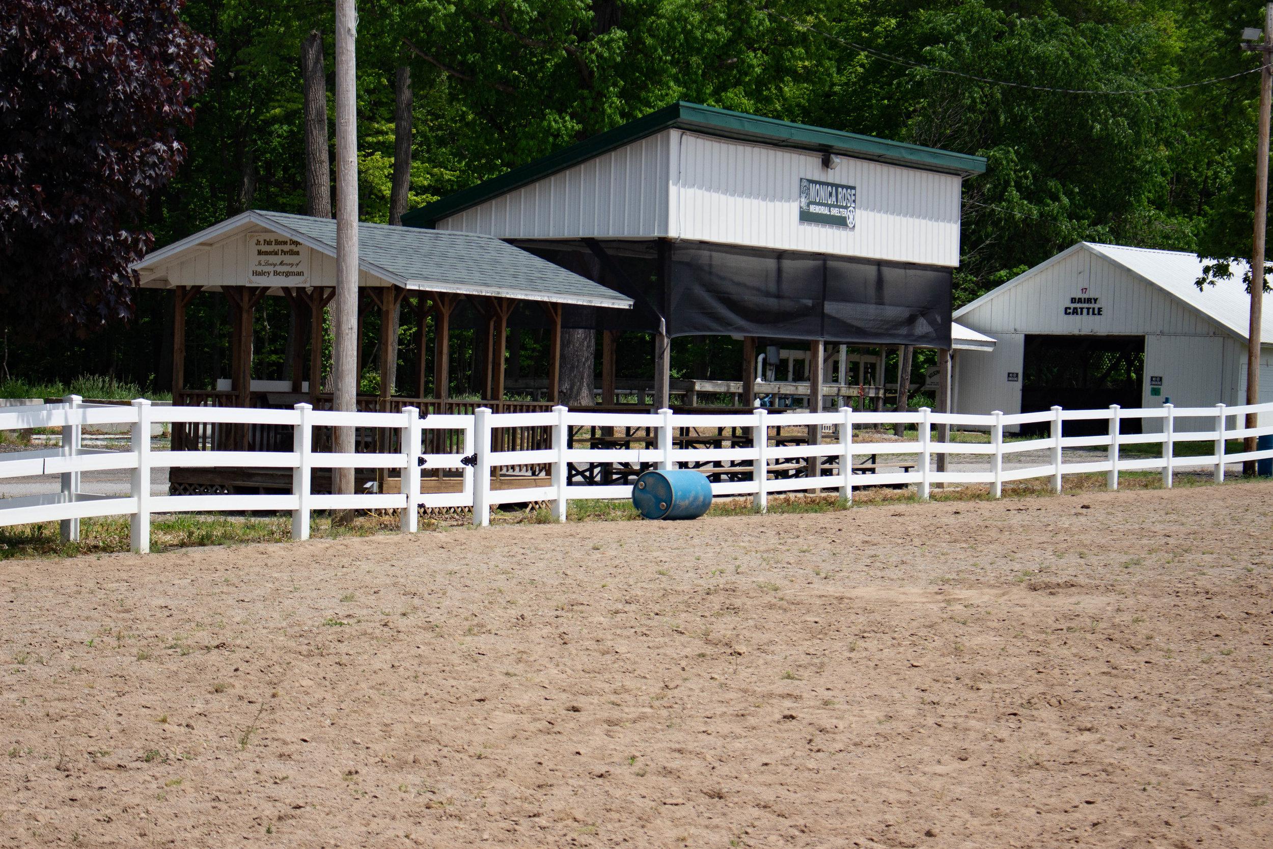 Horse Arena3.jpg
