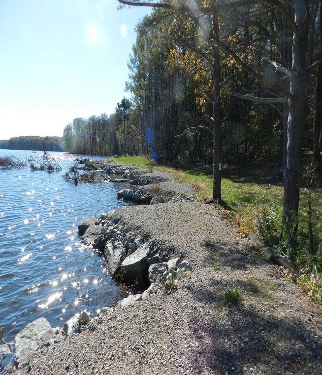 Shoreline  After