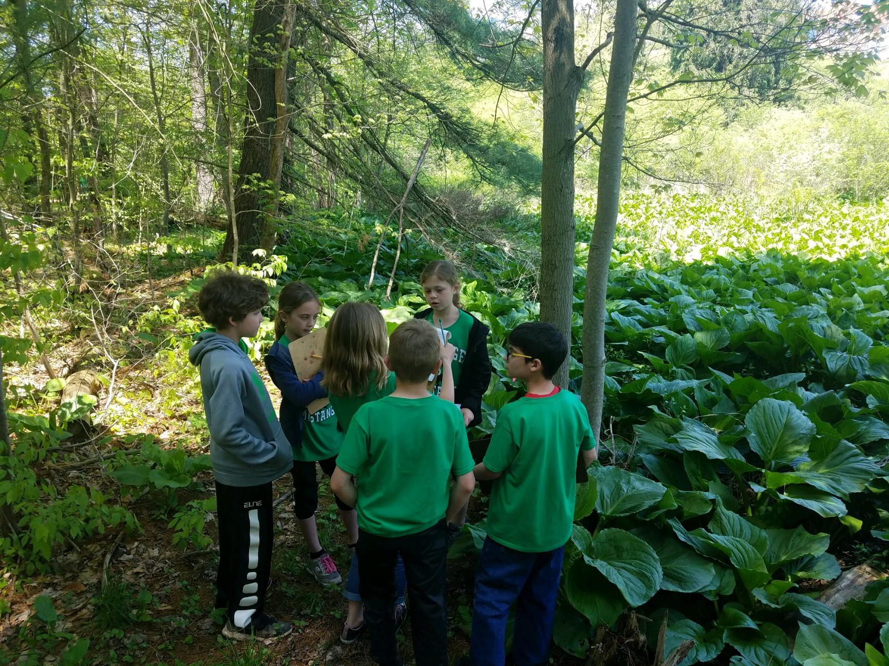 Trail hikes!
