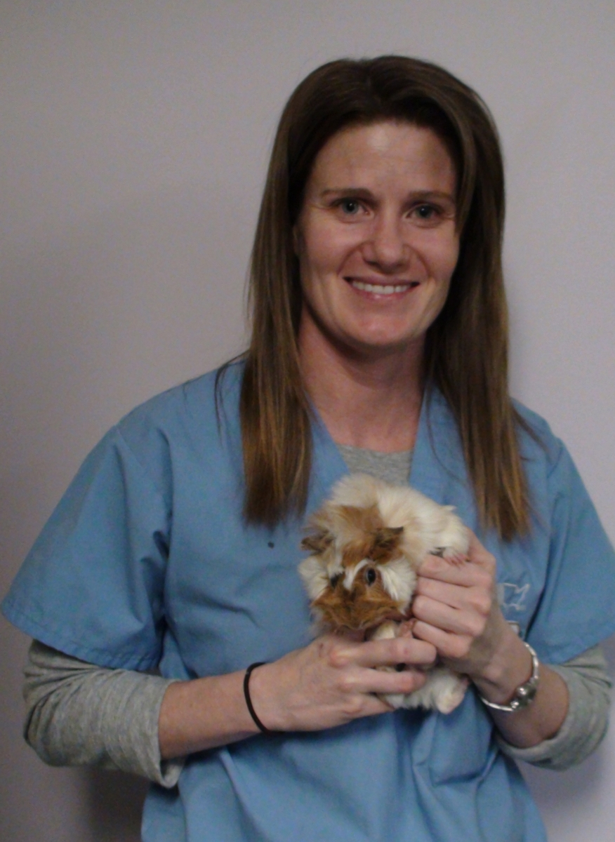 Dr. Michelle Jack, Los Angeles, CA