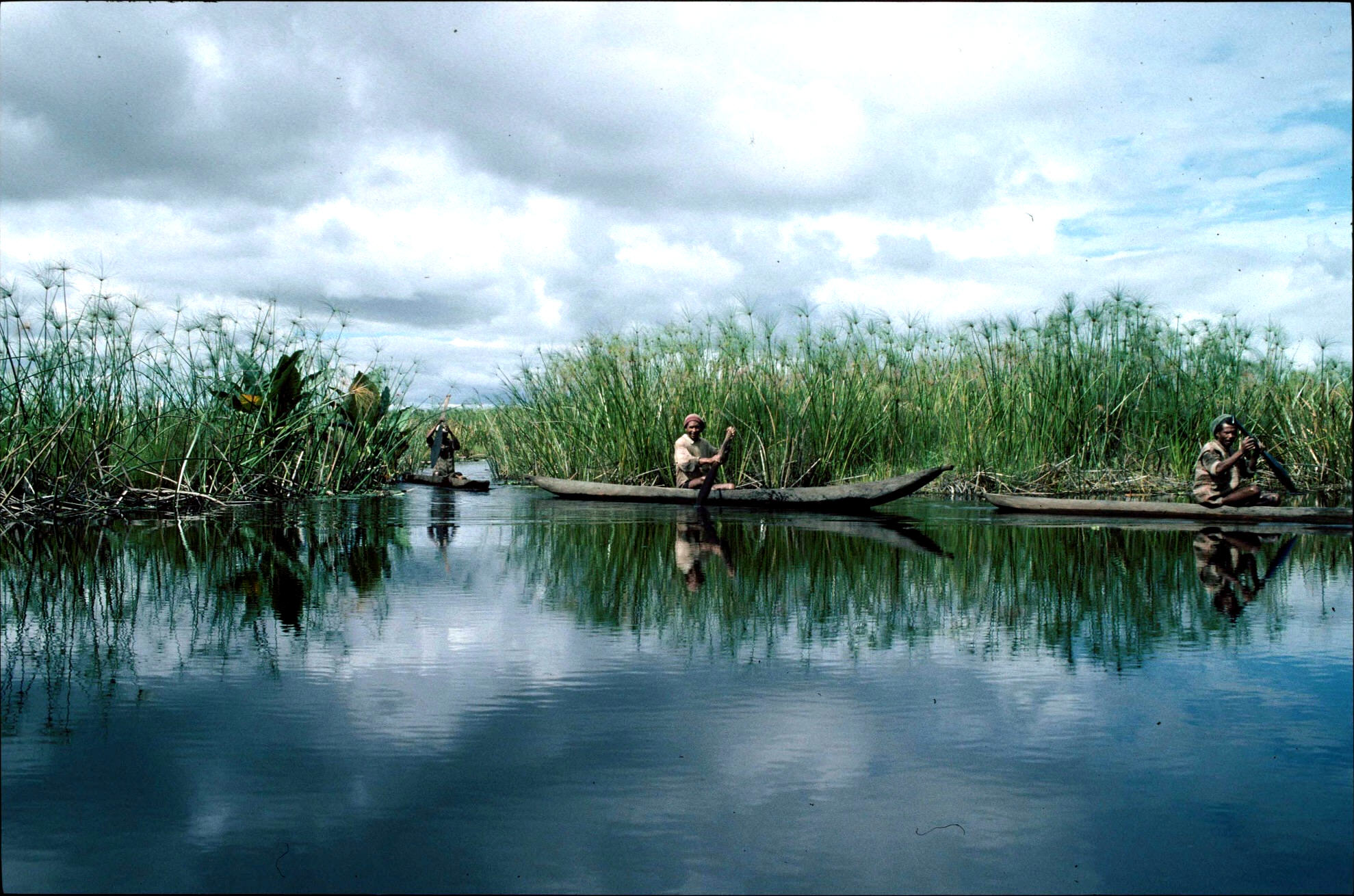 Field Pr Madagascar Lake Alaoatra.JPG