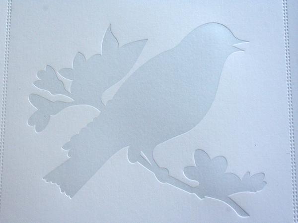 _0004_aiga_portfolio_bird.jpg