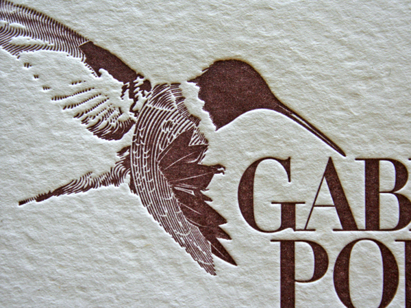 _0002_portillo_janssen_hummingbird.jpg