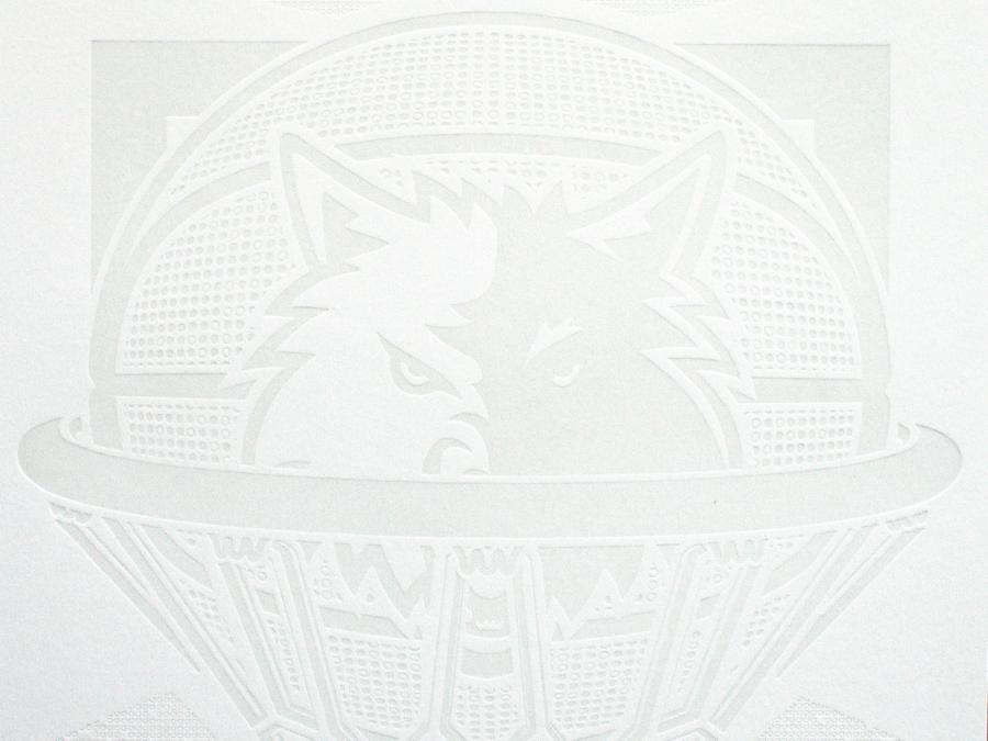 0003_echo_timberwolves_logo_net.jpg