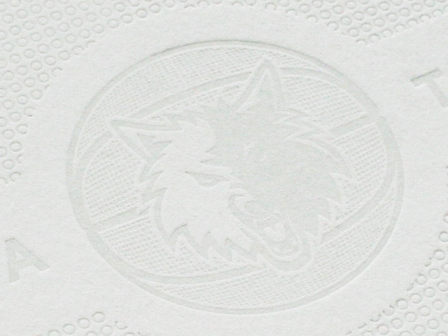 0001_echo_timberwolves_logo.jpg