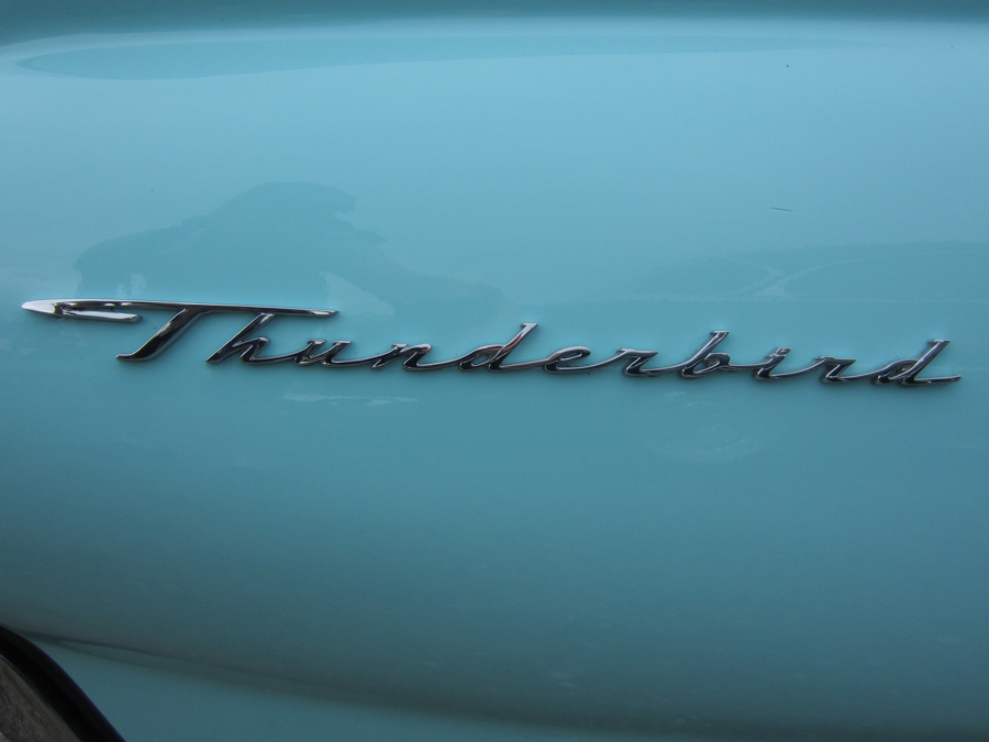 0002_thunderbird_logo_sof.jpg