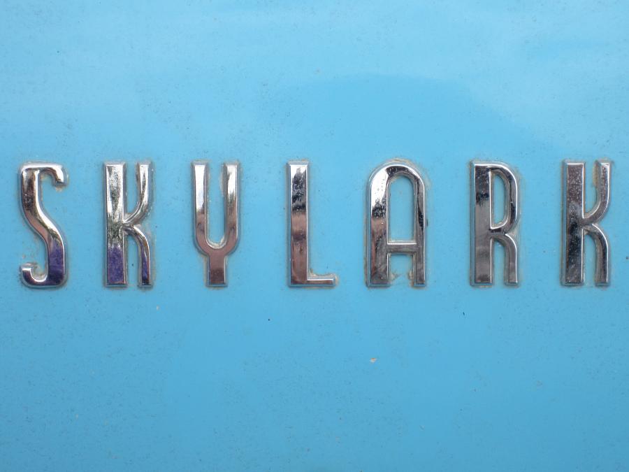 0048_skylark_logo_sof.jpg