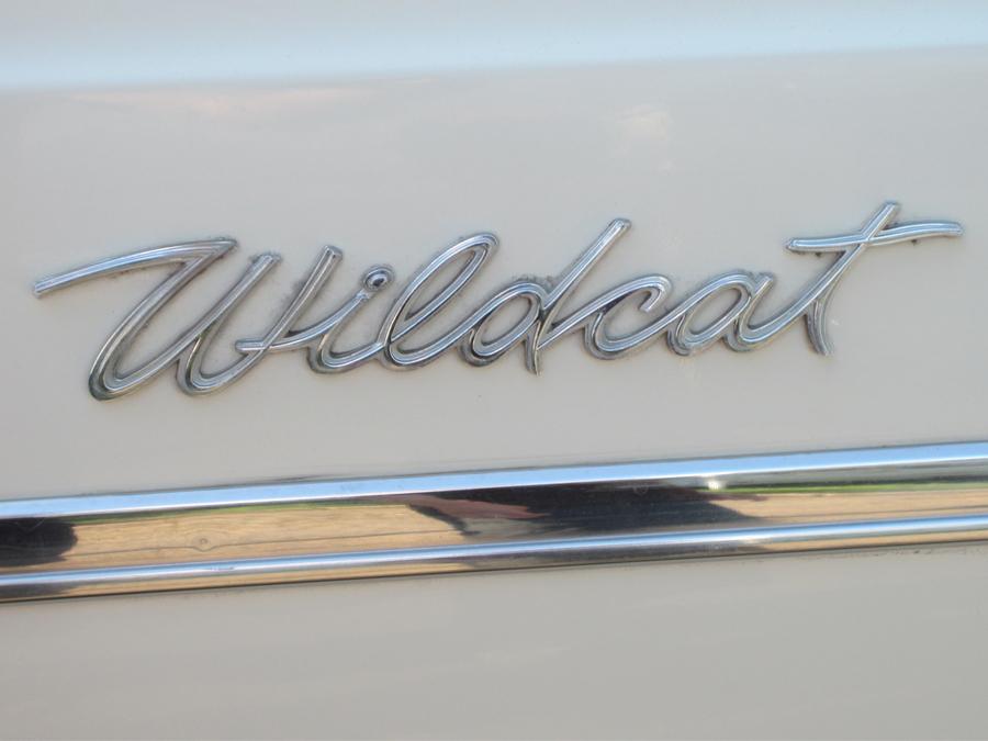 0087_wildcat_logo_sof.jpg